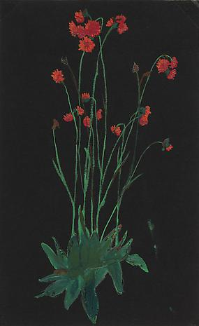 Elizabeth Bishop Red Flowers on Black nd gouache and graphite on paper 9 3/4 x 6 inches