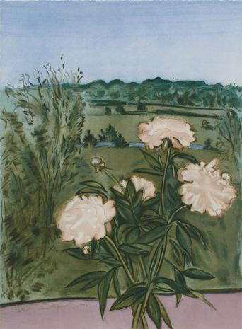 Peonies 1990 Etching with Aquatint and Drypoint 29 1/2 x 22 inches Edition of 65