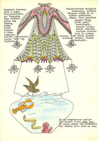 DWIGHT RIPLEY Petrel in a Cage 1951 ink and colored pencil on stationery 10 1/2 x 7 1/4 inches Private Collection